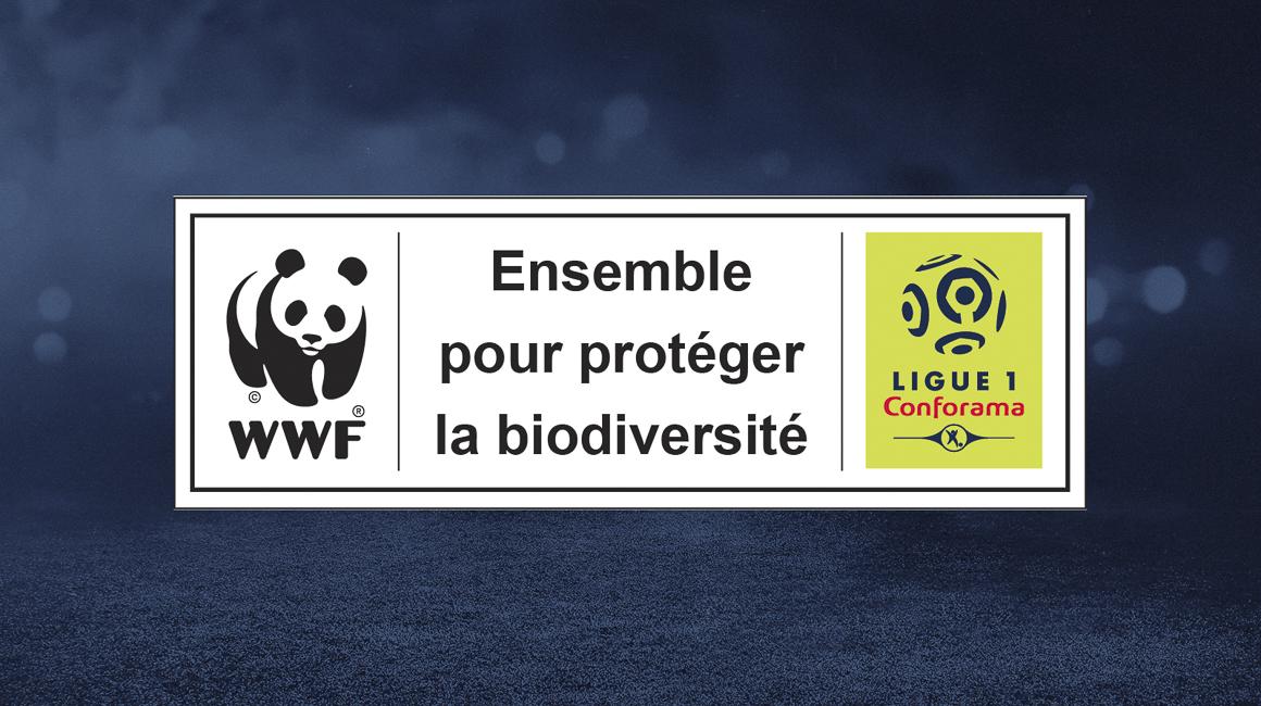 L'AS Monaco engagé pour la protection de l'environnement