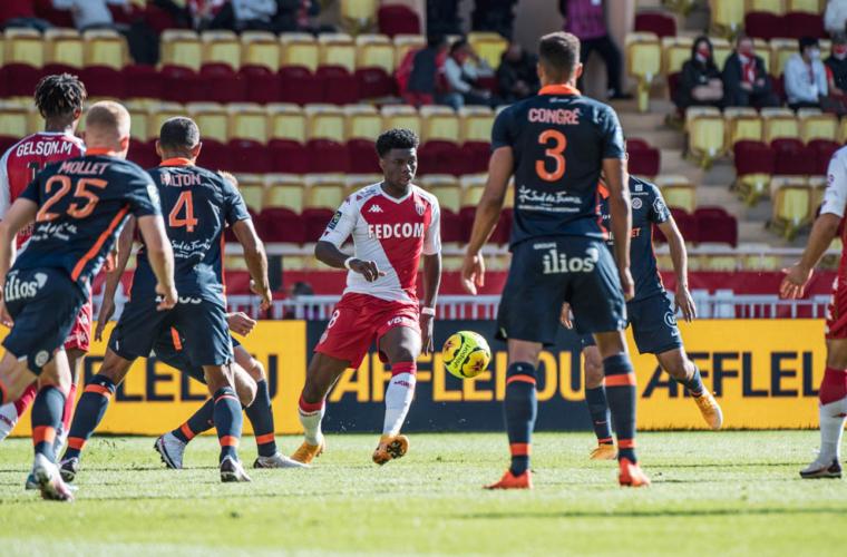 Focus sur l'équipe de Montpellier